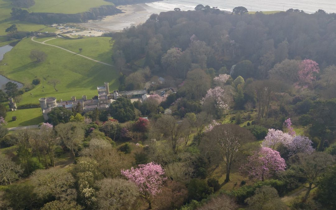 Gardens Open at Caerhays for 2019