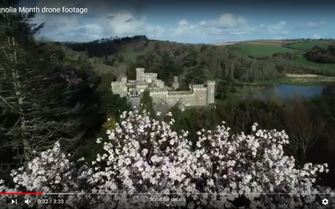 Magnolia drone footage