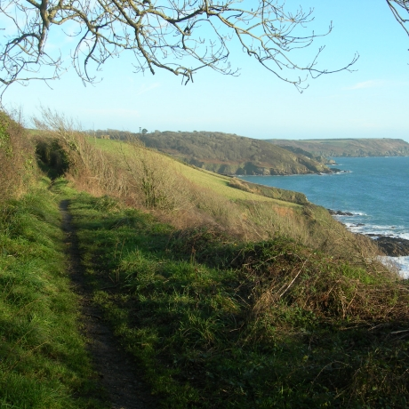 Caerhays Estate - The Coast