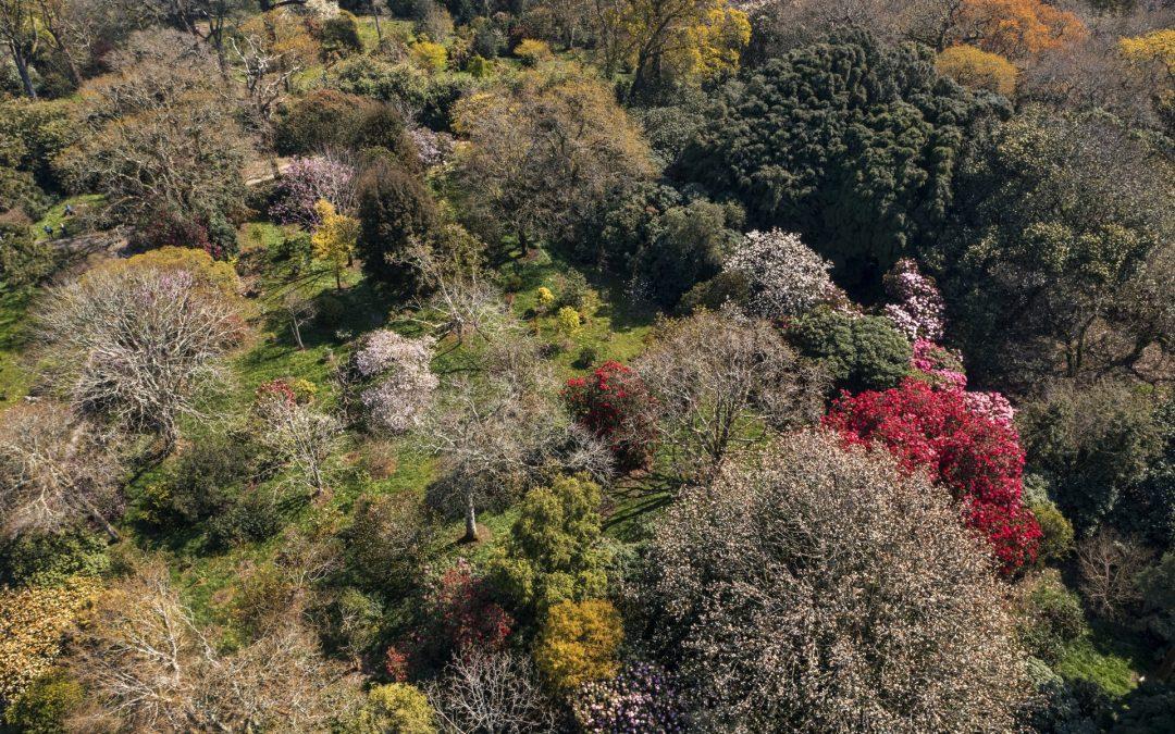 Spectacular views of the garden